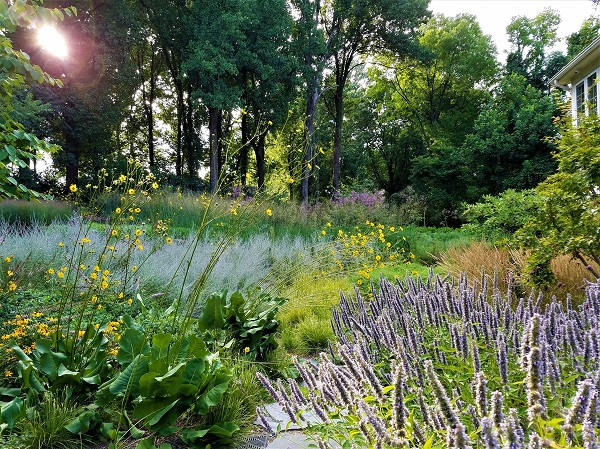 Donald Pell Gardens: Inspired Spaces