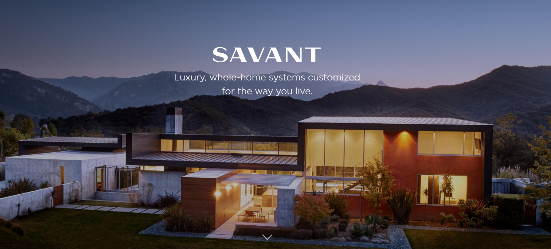 Solutions Spotlight:  Savant